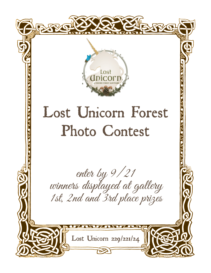 Lostunicornphotocontestsign